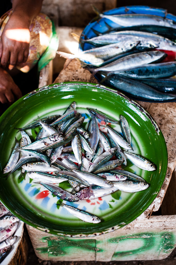 Fish (Lombok - Indonesia)